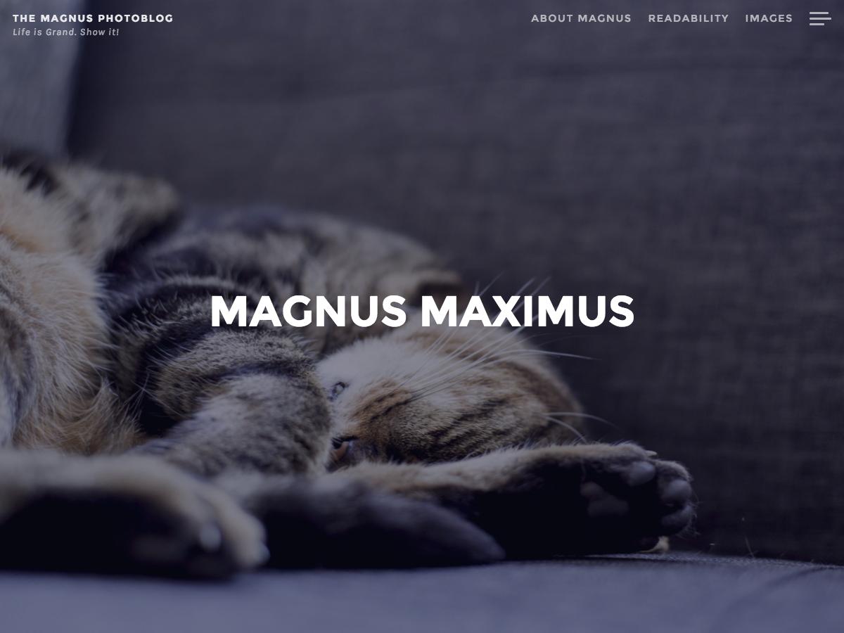 magnus-wordpress-temasi