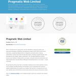 WooExperts Örnek Şirket: Pragmatic Web Limited