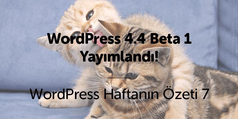 WordPress 4.4 Beta 1 Yayımlandı!