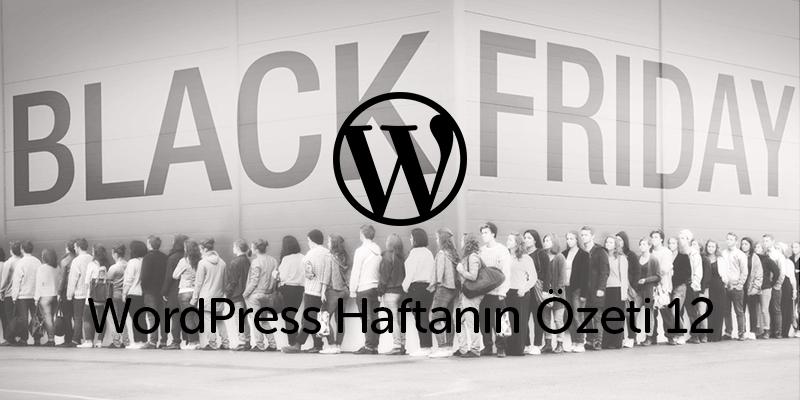 WordPress Dünyasında Kara Cuma İndirimi!